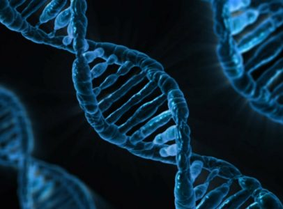 DNA Sequencing and a New Generation of Biotech and Genetics Startups